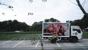 20191204 草莓季開跑!手搖飲推超狂鮮果計畫 「採收、檢驗、配送」力求2小時完成