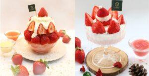 【全台】快到大苑子採草莓!大苑子市府夢想店再推新品「莓好聖誕、莓好雪藏」鮮奶乳酪+鹹奶霜!【YummyDay 20201222】
