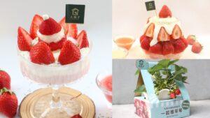 滿滿草莓+鹹奶霜最誘人!大苑子「最狂草莓季」再推2款全新冰品,還能自己種草莓【食尚玩家 20201222】