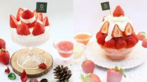 自己種草莓!大苑子推出全新2款草莓限定冰品,必吃「莓好雪藏」以鮮乳奶酪搭配鹹奶霜超療癒【美麗佳人 20201222】