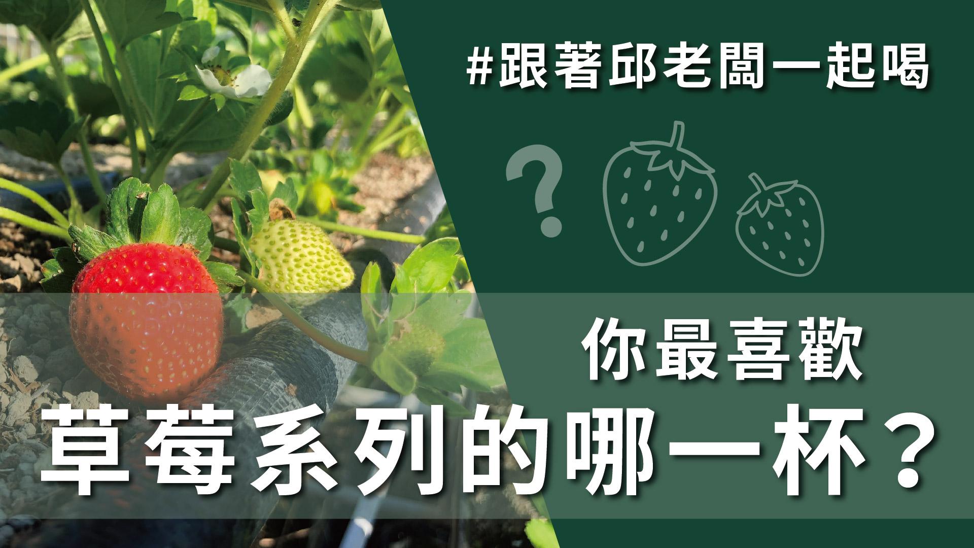 草莓控失心瘋,來自苗栗大湖新鮮草莓,最清爽順口的莓好花漾!#1月26日 #DAY135