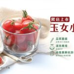 薄脆又多汁的玉女小番茄,2/26起限時限量限店販售中