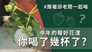 草莓控最愛!! 新鮮且安全的草莓,一喝就讓人上癮的莓好花漾! #2月18日 #DAY158