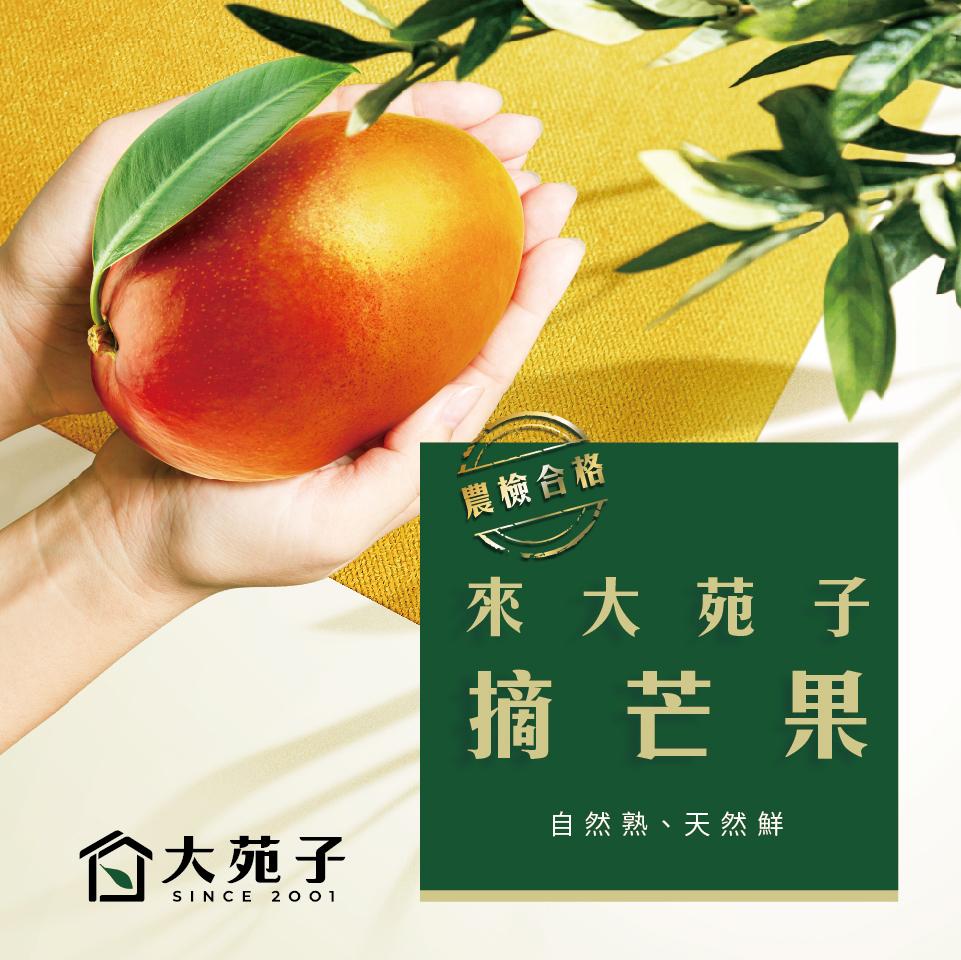 首頁飲品圖960x960-210330_來大苑子摘芒果