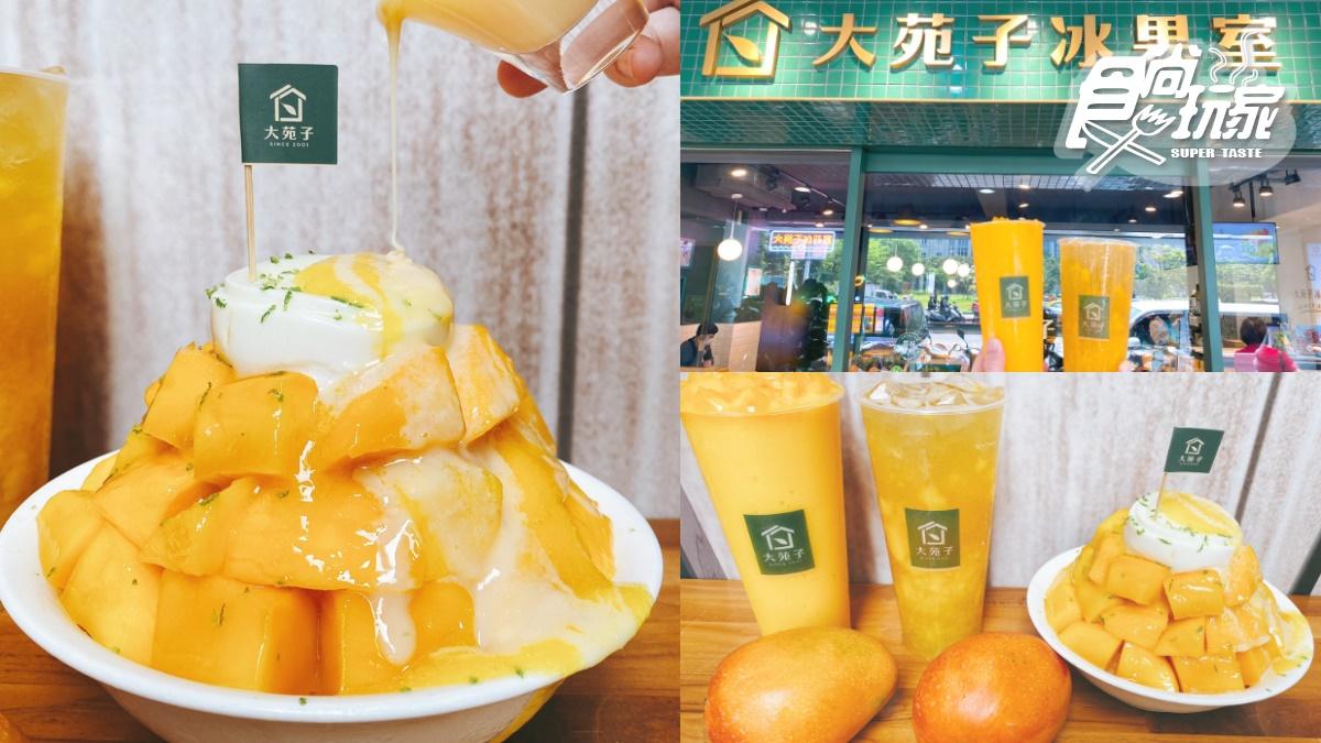 超浮誇芒果冰山+QQ奶酪這裡嗑!「大苑子芒果季」來了,賣破百萬杯「愛文芒果冰沙」回歸【食尚玩家 20210329】